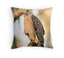 Red Shouldered Hawk Formally Posed Throw Pillow