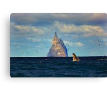 The Whale Shot Canvas Print
