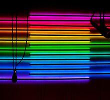 The Vocal Spectrum by Jen Waltmon