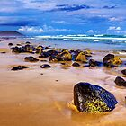Shelley Beach by Dean Cunningham