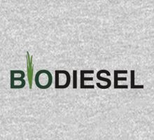 Biodiesel by motobubble