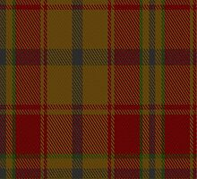 02790 Earle's Flame Fashion Tartan Fabric Print Iphone Case by Detnecs2013