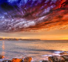 Sydney's Northern Beaches by David Smith