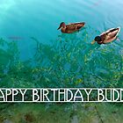 happy birthday buddy by maydaze