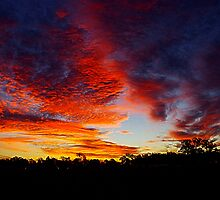 Burrandowan Sunset by Penny Kittel
