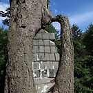 Tree Bricks by Marie Van Schie