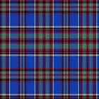 02801 Frederick County, Maryland E-fficial Fashion Tartan Fabric Print Iphone Case by Detnecs2013