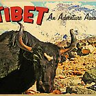Vintage Tibet Ox by House Of Flo