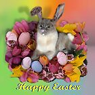 Easter Kitty  by Gravityx9