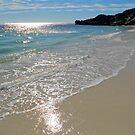 Rottnest Island  by salsbells69