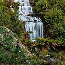Fainter Falls - Bogong Victoria by Mark  Lucey