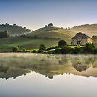 Morning reflections by Peter Zajfrid