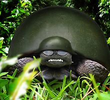 Slow Commando Turtle Helmet by Gravityx9