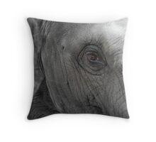 Elephant Baby Eyes Throw Pillow