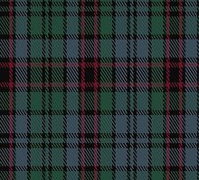 02836 Ellenee Tartan Fabric Print Iphone Case by Detnecs2013