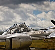 P-38 Lighting by Delfino