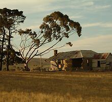 Joe Mortelliti Gallery - Old farm house, at Ceres, near Geelong, Victoria, Australia.  by thisisaustralia
