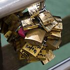 Locks on Ponte del Accedemica by terjekj