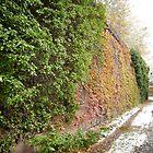 November Sixth Street Embankment, Abandoned Pennsylvania Railroad Embankment , Jersey City, New Jersey  by lenspiro