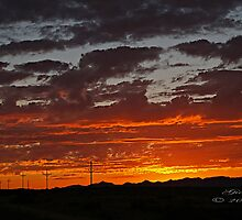 """Arizona Sunset"" by Gail Jones"
