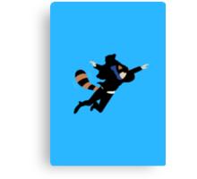 The Reichenbach Raccoon Canvas Print