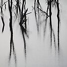 Silent Sentinnels by Geoff Smith