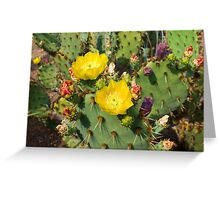 Blooming Cactuses Cactaceae Opuntia Greeting Card