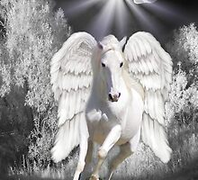 Ƹ̴Ӂ̴ƷANGELIC HORSE PICTURE/CARDƸ̴Ӂ̴Ʒ by ╰⊰✿ℒᵒᶹᵉ Bonita✿⊱╮ Lalonde✿⊱╮