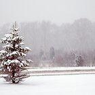 Christmas card with white Christmas snowscene by Cheryl Hall