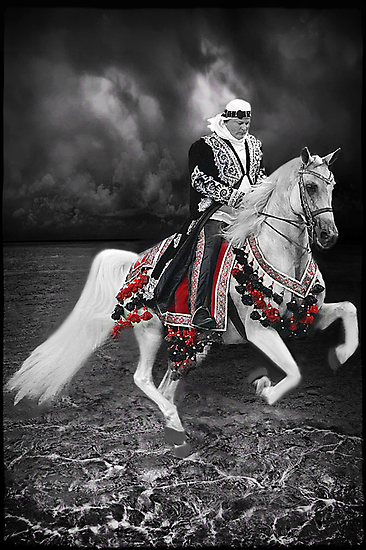 ·٠•● █░║► RIDING THE ARABIAN STORM PICTURE/CARD  ◄║░█ ●•٠· by ╰⊰✿ℒᵒᶹᵉ Bonita✿⊱╮ Lalonde✿⊱╮