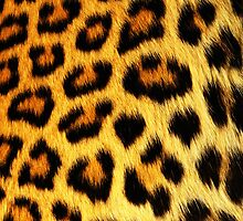 iPhone Cover - Skins Of Cheetah by Chibie