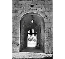 Gated community. Photographic Print