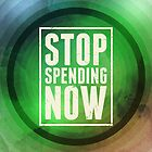 Stop Spending Now by morningdance