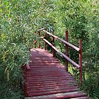 Bridge through the Willows  by Jan  Tribe