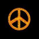 60's Peace Sign Retro Art by Val  Brackenridge