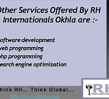 Expertise In Multiple Domain by rhiltd