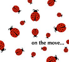 ladybugs on the move ... by maydaze