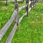 Fences make good photos by Thomas Janowski