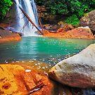 Secluded Vibrance - Douglas Falls, Thomas, WV by Matthew Kocin