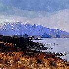 scottish highlands by dale54