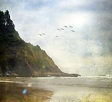 Oregon Coast by LawsonImages