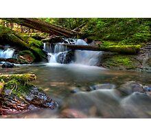 Goat Creek.....Again Photographic Print