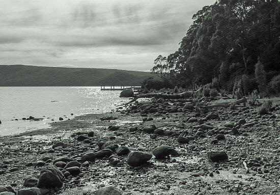 Lake St. Claire, Tasmania, Australia by Elaine Teague