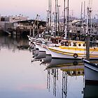 Fisherman;s Wharf Harbor, San Francisco by Mike Koenig