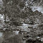 River Dane, near Ship Inn, Wincle by Mikhail31