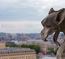 One of Notre-Dame's well known gargoyle statues. by Aleksandar Topalovic