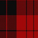 02866 Erskine (Paton) Clan/Family Tartan Fabric Print Iphone Case by Detnecs2013