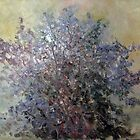Lilac Bush by Mary  Lawson