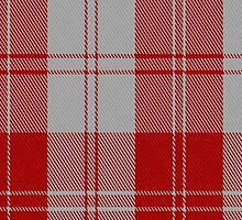 02868 Erskine (Red) Clan/Family Tartan Fabric Print Iphone Case by Detnecs2013