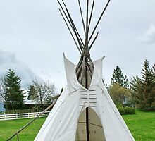 Wigwam in Idaho by AnnDixon